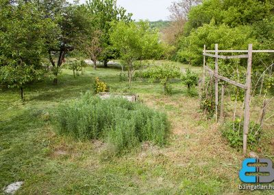 Kajászó - eladó tanya nagy telekkel, családi házzal
